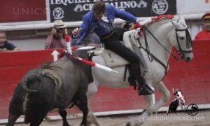 'Nevado' en Aguascalientes, un caballo que se ha erigido en el sustituto natural de 'Pirata'. Fotografía:: pablohermso.net