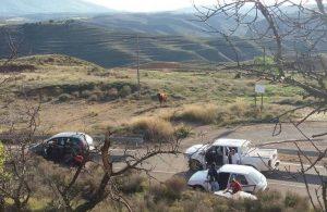 El toro escapado galopó hasta el campo.