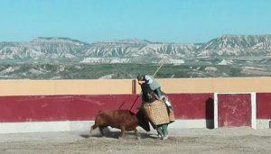 Una de las vacas en el caballo