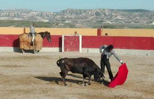 Una vaca en la muleta