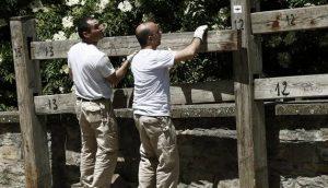 Dos operarios colocando el año pasado un tablón del vallado del encierro. Fotografía: Calleja.