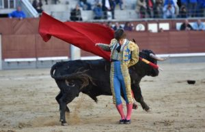 Manaoletina de Javier Marín esta tarde en Las Ventas al primero de su lote. Fotografía: Luis Sánchez Olmedo.