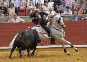 El caballo 'Nevado' hizo su presentación en los ruedos europeos.
