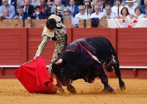 Derechazo de Castella al cuarto de Victoriano del Río en Sevilla, un gran toro premiado con la vuelta al ruedo. Fotografía: Arjona.