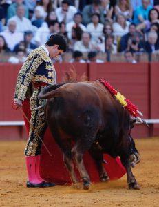 Toñete dejó en Sevilla destellos, detalles de su buen toreo. Fotografía: Arjona.