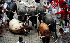 Un momento del último encierro del año pasado, con toros de Miura.