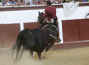 Disparate. León. 24-VI-2017