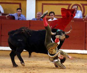 Momento de la cogida que sufrió Roca Rey en Badajoz. Fotografía: Arjona.