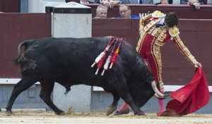Natural de Roca Rey al tercer toro de Victoriano del Rñio al que le cortó ayer una oreja  Fotografía: Javier Arroyo.