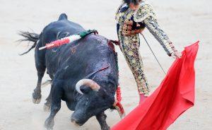 Al igual que el año pasado, Roca Rey toreará dos tardes en Pamplona.