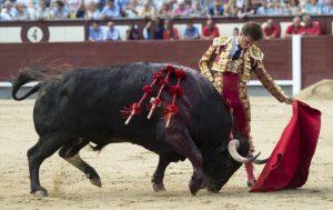 El Juli, al natural, ante el cuarto, el único toro con opciones de la Corrida de Beneficencia. Fotografía: Javier Arroyo.