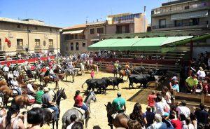 El ganado fue conducido hasta la plaza de Larraga. Fotografía: Alberto Galdona.