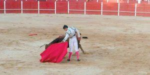 El mexicano Adame, toreando al natural, ayer en San Adrián. Fotografía: Mancha.