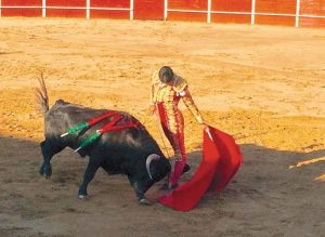 Torero remate de Alfonso Ortiz al bravo segundo de la tarde en San Adrián. Fotografía: Mancha.