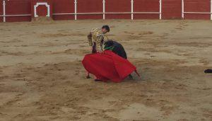 Toreo en redondo de Daniel Barbero, ayer en San Adrián. Fotografía: Mancha.
