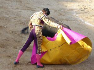 Verónica de Daniel Barbero, que ya toreó en San Adrián el año pasado.