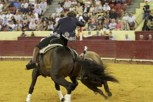 'Disparate' ofreció en la plaza lisboeta otro recital de toreo a caballo. Fotografía: pablohermoso.net