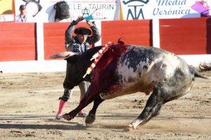 Manolo de los Reyes poniendo un par en Ceret el pasado 14 de julio a un toro de Miura.