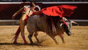 Pase de pecho de Javier Cortés al segundo del festejo, de Couto de Fornilhos, al que le cortó una oreja.