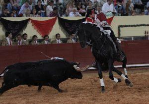 El caballero navarro recibió al segundo de su lote con 'Alquimista'. Fotografía: pablohermoso.net