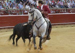 El caballero navarro, toreando sobre 'Brindis' en Huelva. Fotografía: pablohermoso.net