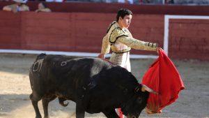 Pase de pecho de El Adoureño en Estella. Fotografía: Unai Beoriz.
