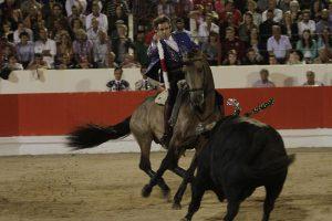 'Janucá' fue el caballo de Hermoso más destacado en el coso porugués de Alcochete. Fotografía: pablohermoso..net