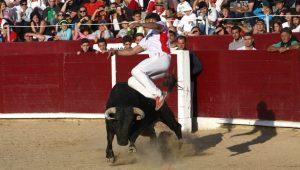 Magnífico salto de Santiago Conde, triunfador en Estella. Fotografía: Manuel Sagüés.