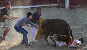 Este joven quedó enganchado por la faja festiva y precisó la ayuda de otros compañeros para liberarse de la vaca. Se levantó por su pie. Fotografía: Montxo A. G.