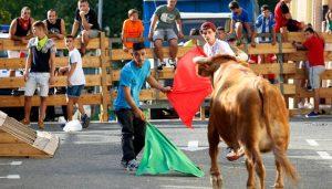 Un momento de la suelta de vacas en las fiestas de Noain. Fotografía: Eduardo Buxens.