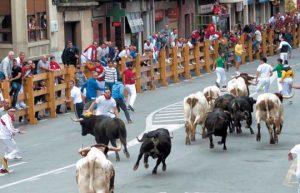 Los utreros de Ganadería de Pincha apenas crearon problemas en el primer encierro de las fiestas de Peralta.