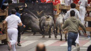 El encierro en Peralta de esta mañana en su tramo final. Fotografía: Miguel Osés.