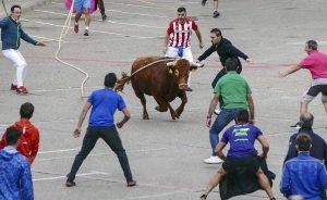 La suelta del toro con soga de Lodosa supuso otro éxito de público. Fotografía: Montxo A. G.