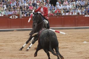 'Berlín' ofeció en La Glorieta otra lección de toreo a caballo. Fotografía: pablohermoso.net