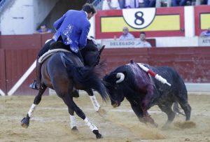 'Disparate' ha sido uno de los caballos destacados en Ejea de los Caballeros.