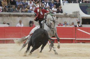 'Donatelli' fue uno de los caballos destacados en NImes. Fotografía: pablohermoso.net