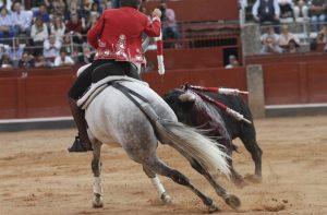 Donatelli. Salamanca. 21-IX-2017
