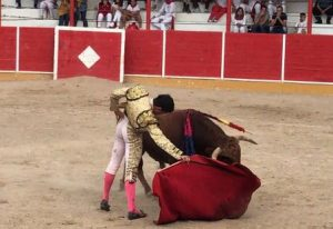 El Adoureño, tras causar baja en Peralta, regresó a Navarra y volvió a triunfar.