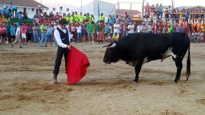 Javier Antón cita en Siruela al toro que le cayó en suerte, al que le cortó las dos orejas y el rabo.