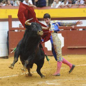 Pase de pecho de Toñete al primero de su lote en Algemesí. Fotografía: Mateo.