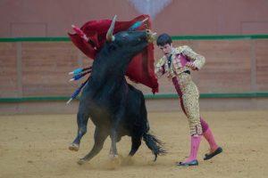 Pase de pecho de Toñete al primero de su lote, esta tarde en Arnedo. Fotografía: Carmelo Betolaza.