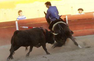 El caballo 'Berlín' realizó otra demostración de su poderío en Teocaltiche. Fotografía: pablohermoso.net