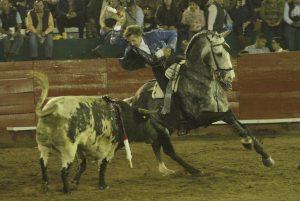 Dom Quixote. Ciudad Hidalgo. 1-XI-2017