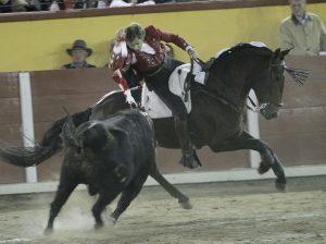 Jabugo. Tlaxcala. 18-XI-2017