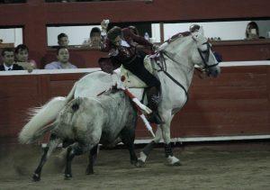 El caballo 'Nevado' toreó por primera vez en México en esta temprorada.