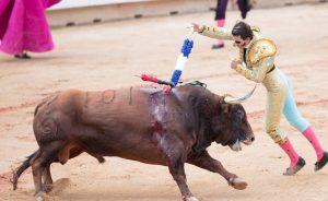 Padilla no logró lucirse este año en Pamplona ni con los rehiletes.