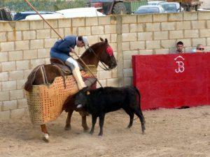 La primera erala tentada de Ganadería de Pincha fue brava en el caballo.