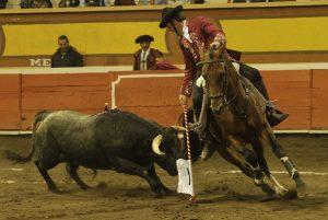 'Ágora II', en su segunda actuación en los ruedos, se las tuvo que ver con otro difícil manso. Fotografía: pablohermoso.net