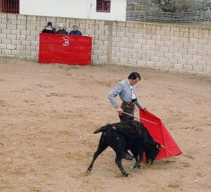 Ayudado de Uceda Leal el sábado pasado en Lodosa. Fotografía: Sara Roldán.