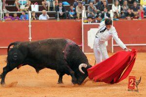 Natural del navarro Javier Antón, en una corrida de toros del año pasado.